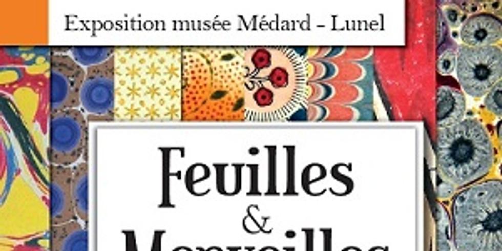 """Exposition """" Feuilles et Merveilles, l'univers des papiers décorés """" au Musée Médard à Lunel"""