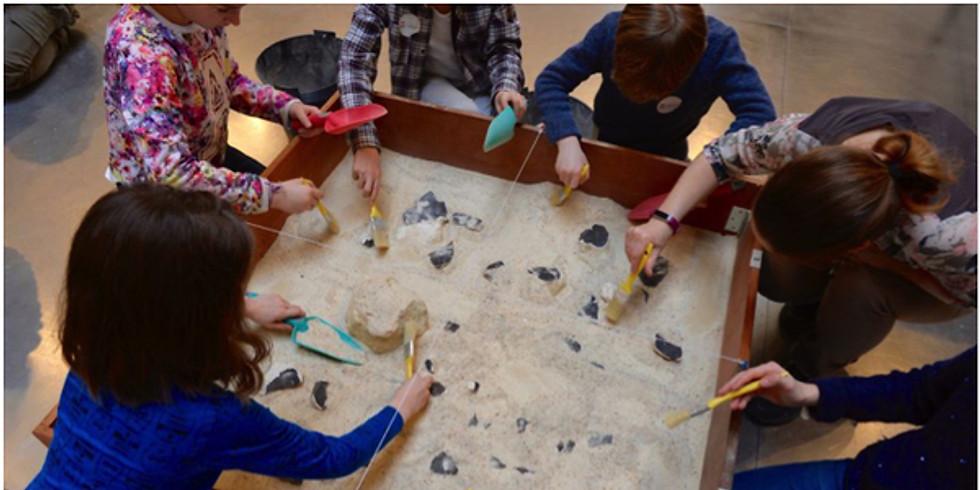 """Atelier """"Comme un paléontologue"""" au Museum d'histoire naturelle de Nîmes"""