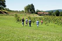 progetto agricolo 1.jpg