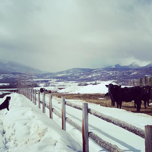 Snowmass Ranch