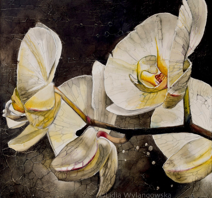 """#317""""White Orchid"""" 2021 18_x18_ oil on wood"""