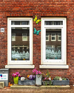 My neighborhood- Amsterdam #neighborhood