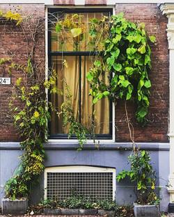 Utrech City - Downtown _Utrecht is a cit