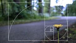 Diseño sin título (1).jpg