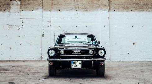 Mustang_02_frontal.jpg