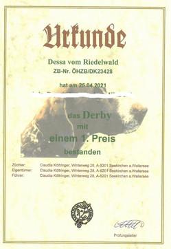 Urkunde Derby 25.04.2021