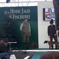 jagdhunde-vorfuehrung-hohe-jagd-2018-2.j