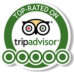 Tripadvisor-Reviews-mobile-Banner1-1.jpg