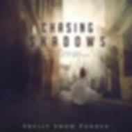 Chasing Shadows - audiobook.jpg