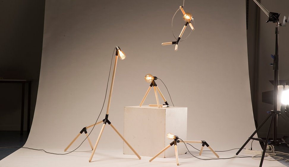 lightning_animal lights_Luxio_Rik van Mi