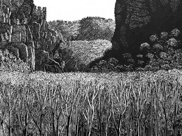 Champe Rocks, Pendleton County, West Virginia