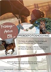 Frühlingsangebot Pferdeshooting.png