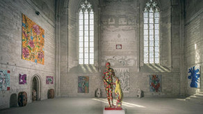 """Trailer - """"Métamorphoses méditerranéennes : une rétrospective"""" Palais des Papes, Avignon - 2014"""
