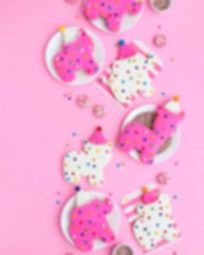 cookieparty.jpg