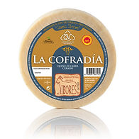 QyT-castuereña-queso.png