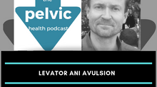 Levator ani avulsion with Prof Peter Dietz Part 1