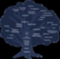 Denomination tree