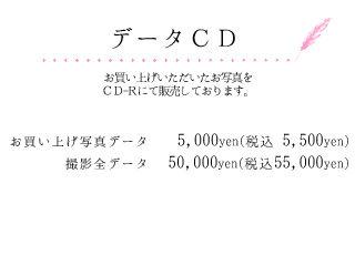 データCD.jpg