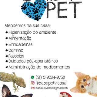 2019 - Babá Pet