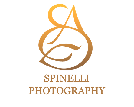 spinelli photography logo