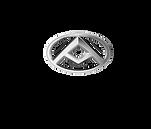 logo NUEVO MAXUS vectorizado 2019-01.png