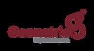 Geonetric Logo Burgundy.png