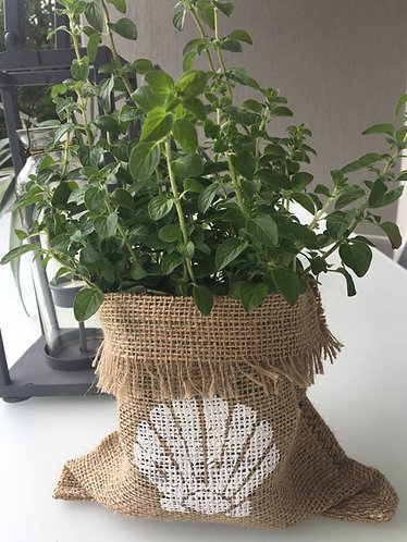 "CUBBY #1 Hessian Plant/Produce/Gift Sack - 11cm/4"" pot size"