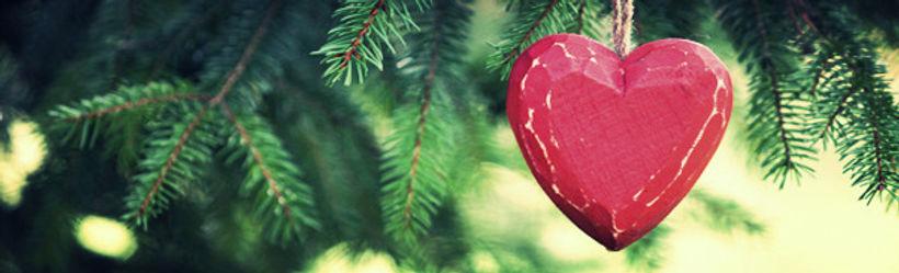 upick christmas trees bedford sackville halifax