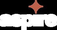 Aspire Nashville 2021 Logo - White.png