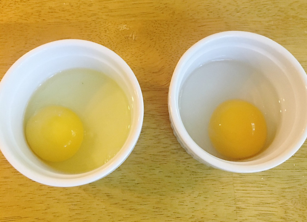 On the left:  cage-free chicken egg from the grocery store