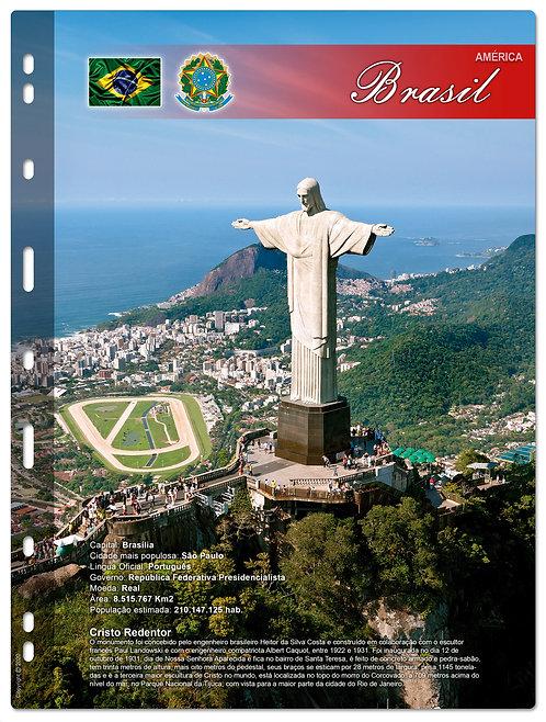 Divisórias para Coleções Diversas - Kit 10 Países do Mundo (em desenvolvimento)
