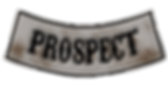 Prospect_edited.png