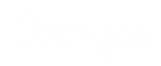 Chilanga logo - WHITE.png