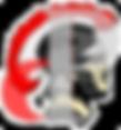 PHS_logo.png