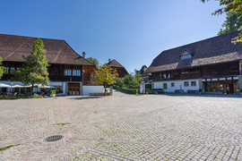 Münsingen - Schlossgut