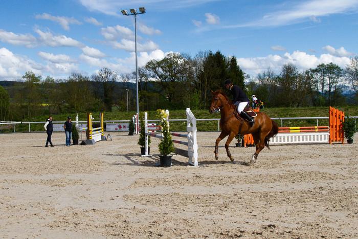 Pferdesporttage Münsingen