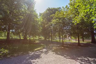 Münsingen - Schlosspark
