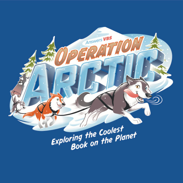 X1 Designs for the site Operation Arctic