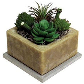 Habersham Wax Pottery, Faux Succulents Prickly Pear & Aloe