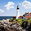 Thumbnail: Pink Picasso, Leading Lighthouse