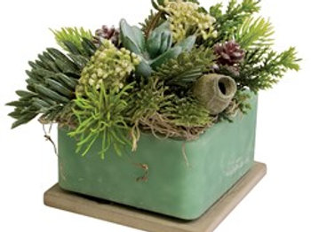Habersham Wax Pottery, Faux Succulents Blue Ice