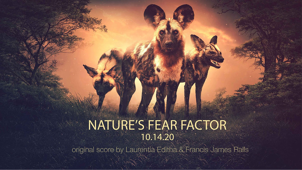 NOVA Nature Fear Factor no network logos