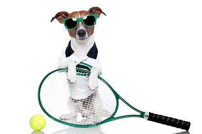 Demper tennisracket