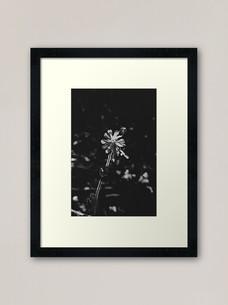 work-49053603-framed-art-print.jpg