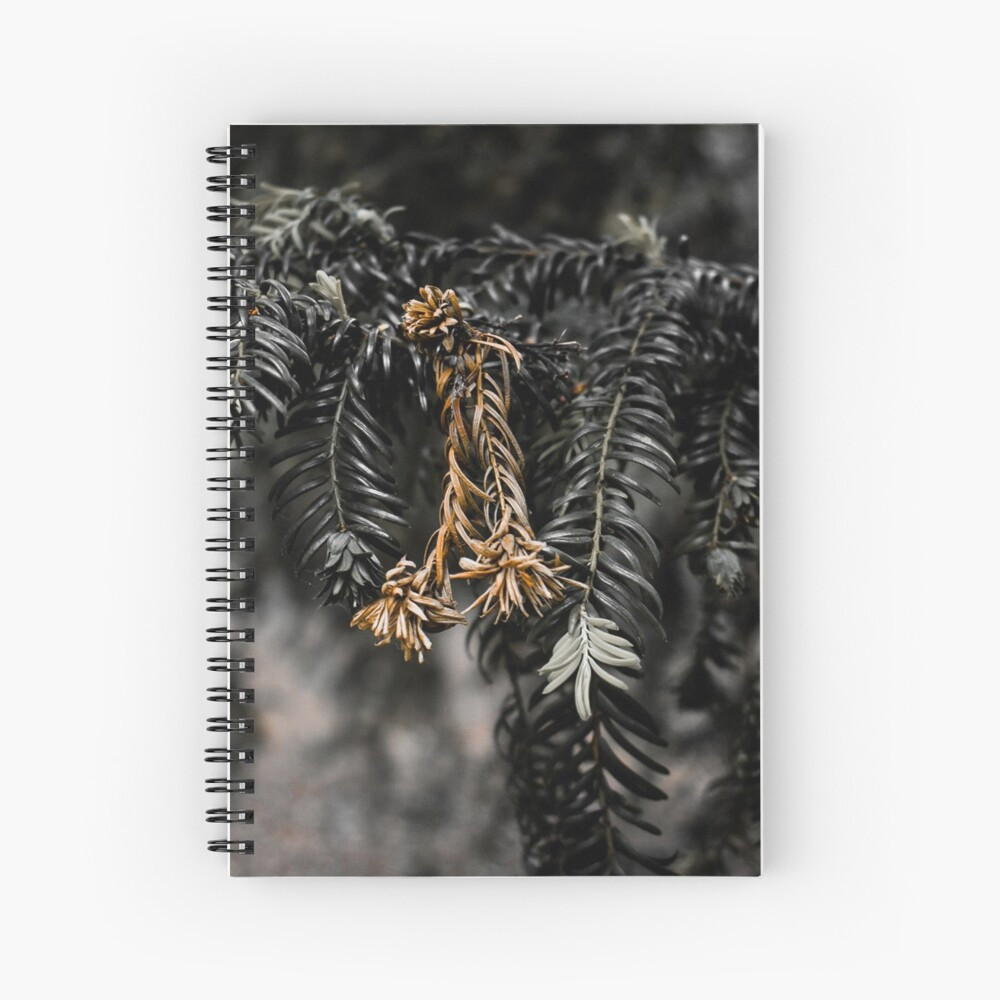 work-49255882-spiral-notebook.jpg