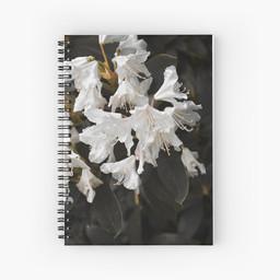 work-47935160-spiral-notebook.jpg