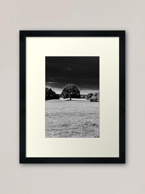 work-49051985-framed-art-print-2.jpg