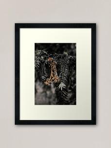 work-49255882-framed-art-print.jpg