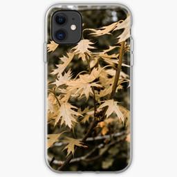 work-48090194-iphone-soft-case.jpg