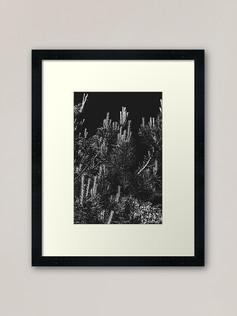 work-49058675-framed-art-print.jpg